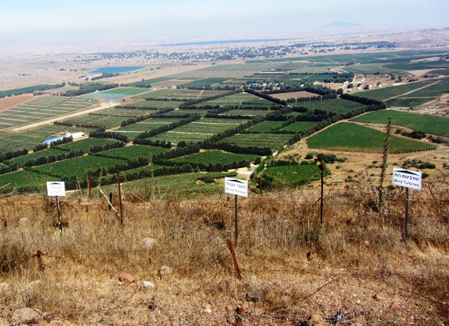 comparing fences and ysrael However, they warn against generalizing that the fence is the sole reason for the drop and raise objections in comparing israel's border issues to those in the united states.