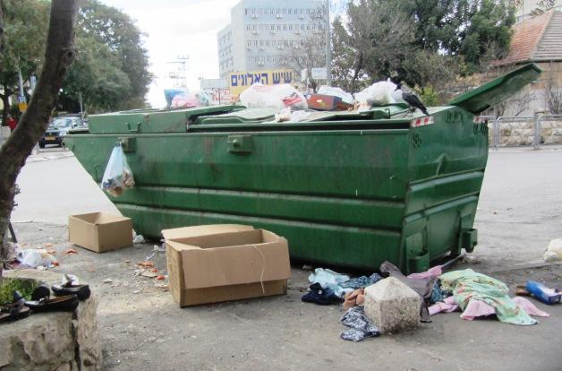 bird on garbage bin