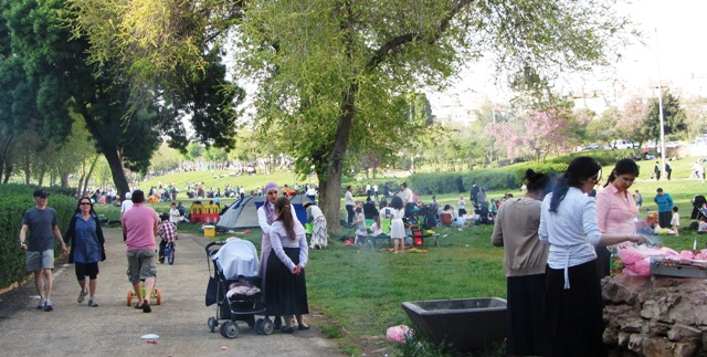 """picutre SAcher Park"", ""image park, ""photo picnic"""