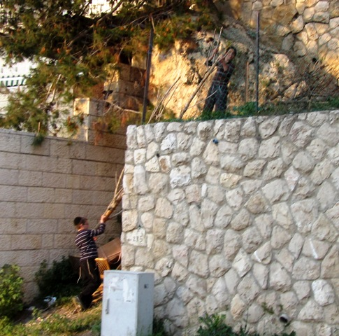 """photo Lag Ba'omer"", ""picture lag ba'omer"", ""photo Jerusalem"""