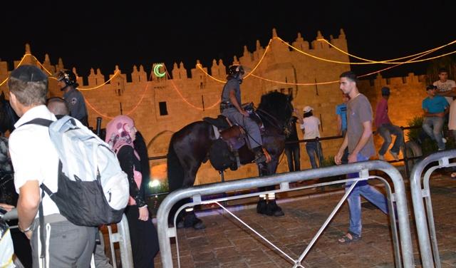 """""""photo Damascus Gate""""., """"image horse"""", """"security Jerusalem"""""""