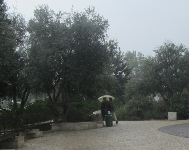 sharing an umbrella, Jerusalem photography tour, J Street