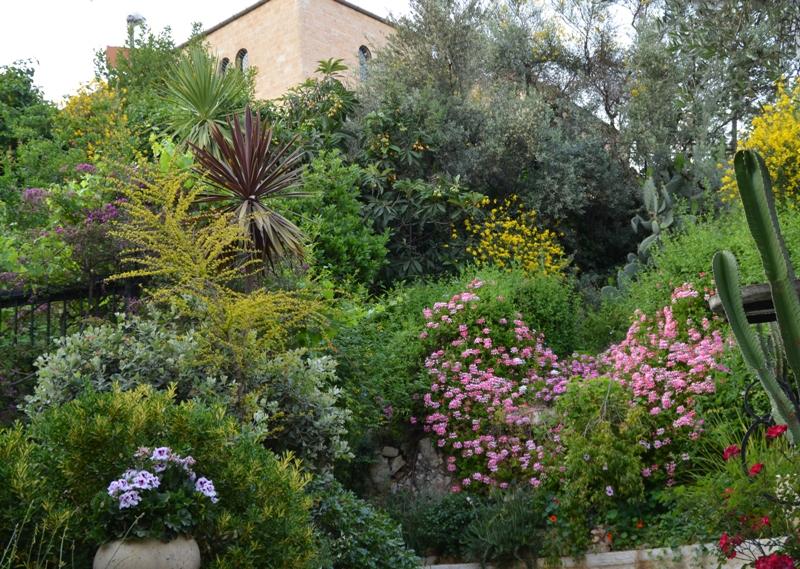 Floral scene Jerusalem