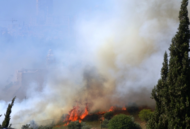 image fire in Jerusalem, fire photo, flames of brush fire