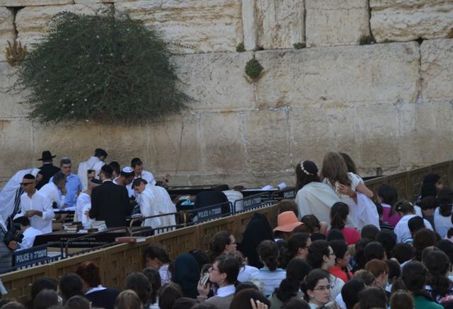 photo Bar Mitzvah at Kosel