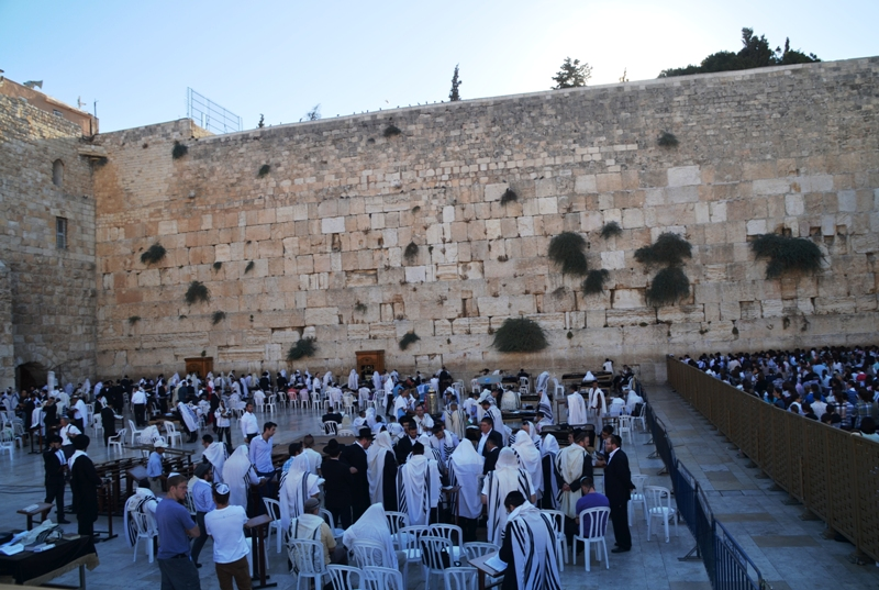 Men praying at Western Wall
