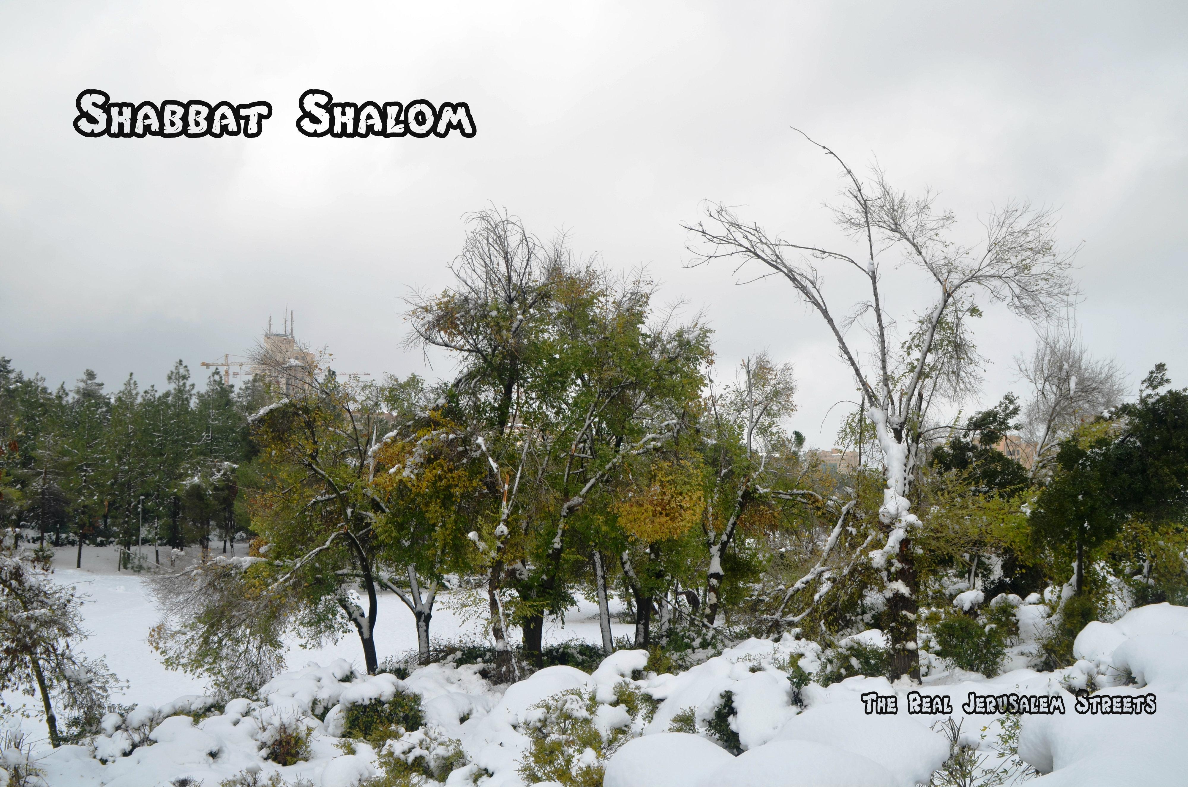 Shabbat shalom image, picture Shabat shalom winter, photo Jerusalem park in snow Shabbat