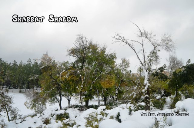 Shabbat shalom image, picture Shabat shalom winter, photo Jerusalem park in snow Shabbat