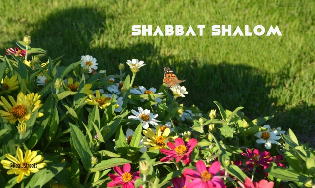picture for Shabos, photo for Shabat, image for Sabbath