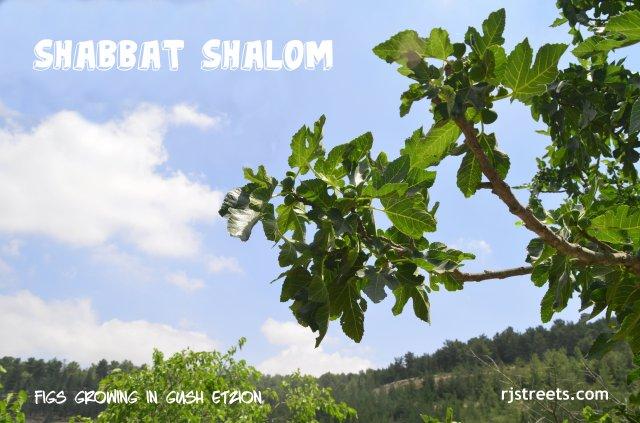 Shabbat shalom poster, image shabat shalom
