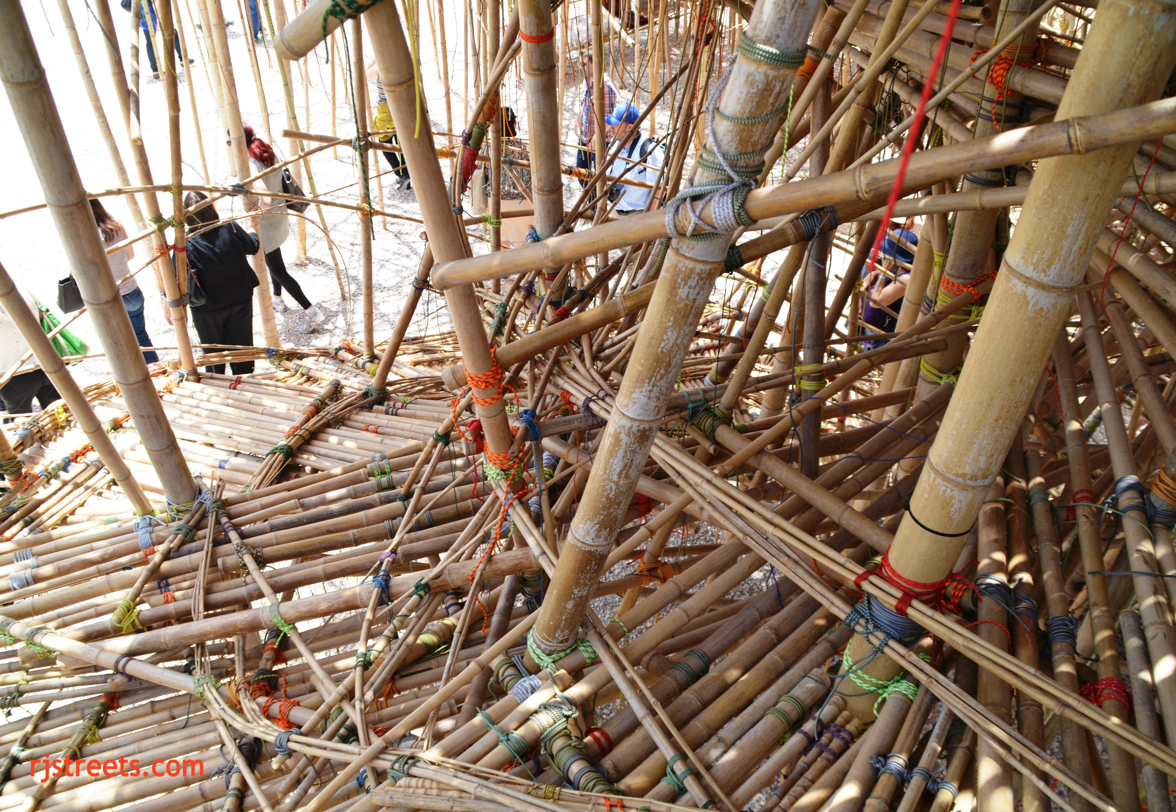 image Big Bambu