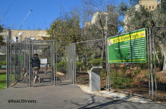 image dog park