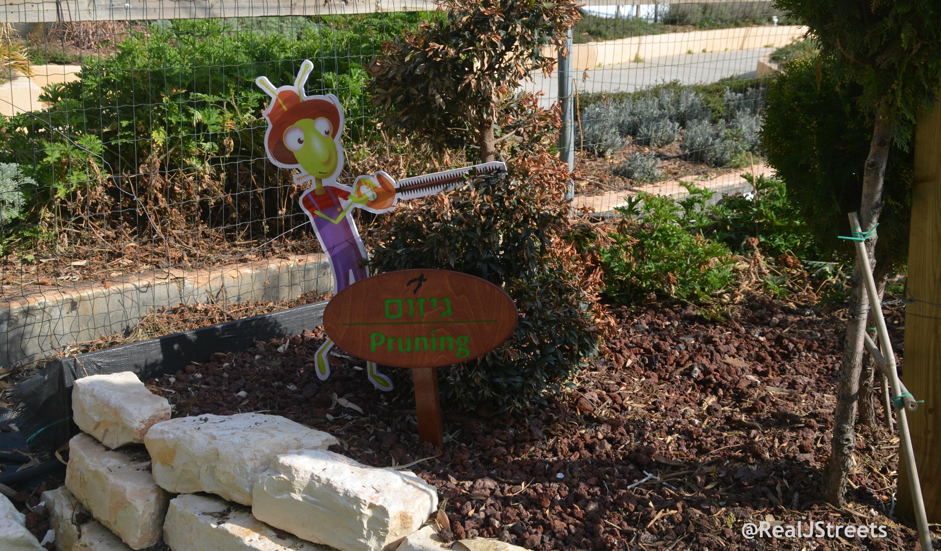 image in shmita park
