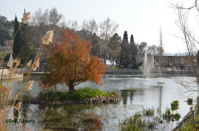image Botanical Gardens Jerusalem Israel