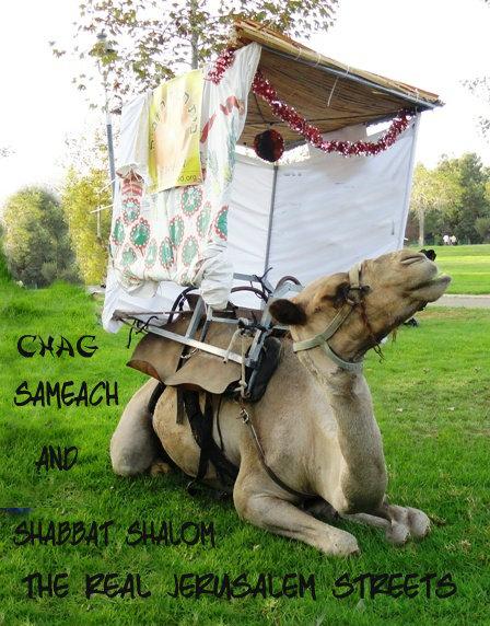 Special Sukkah ShabbatShalom