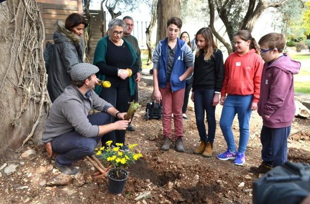 planting beit hanasi
