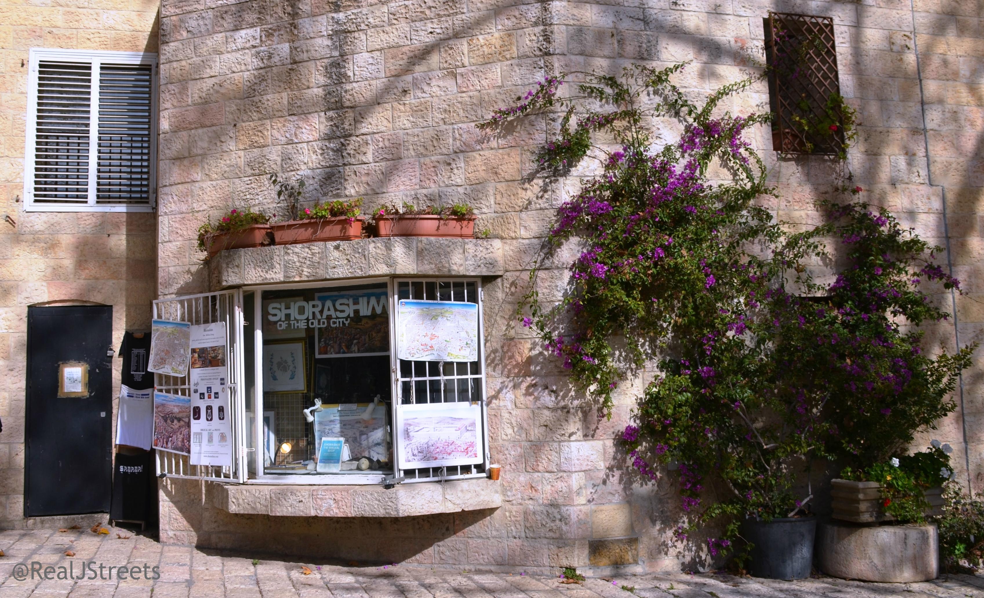 Rova, flowers on Shorashim gift shop