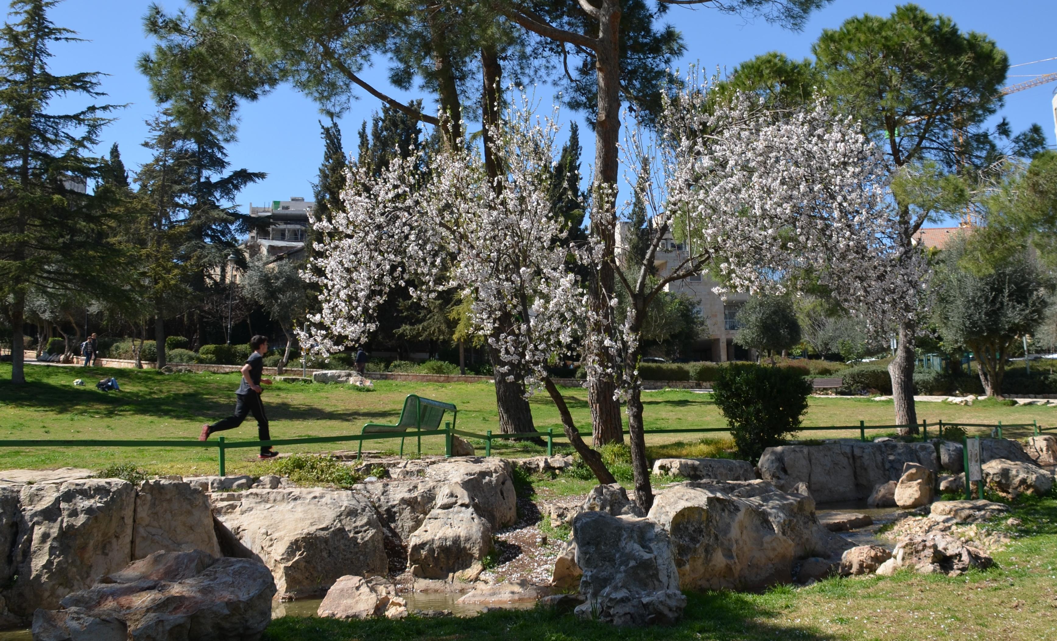 Jerusalem Israel Independence Park