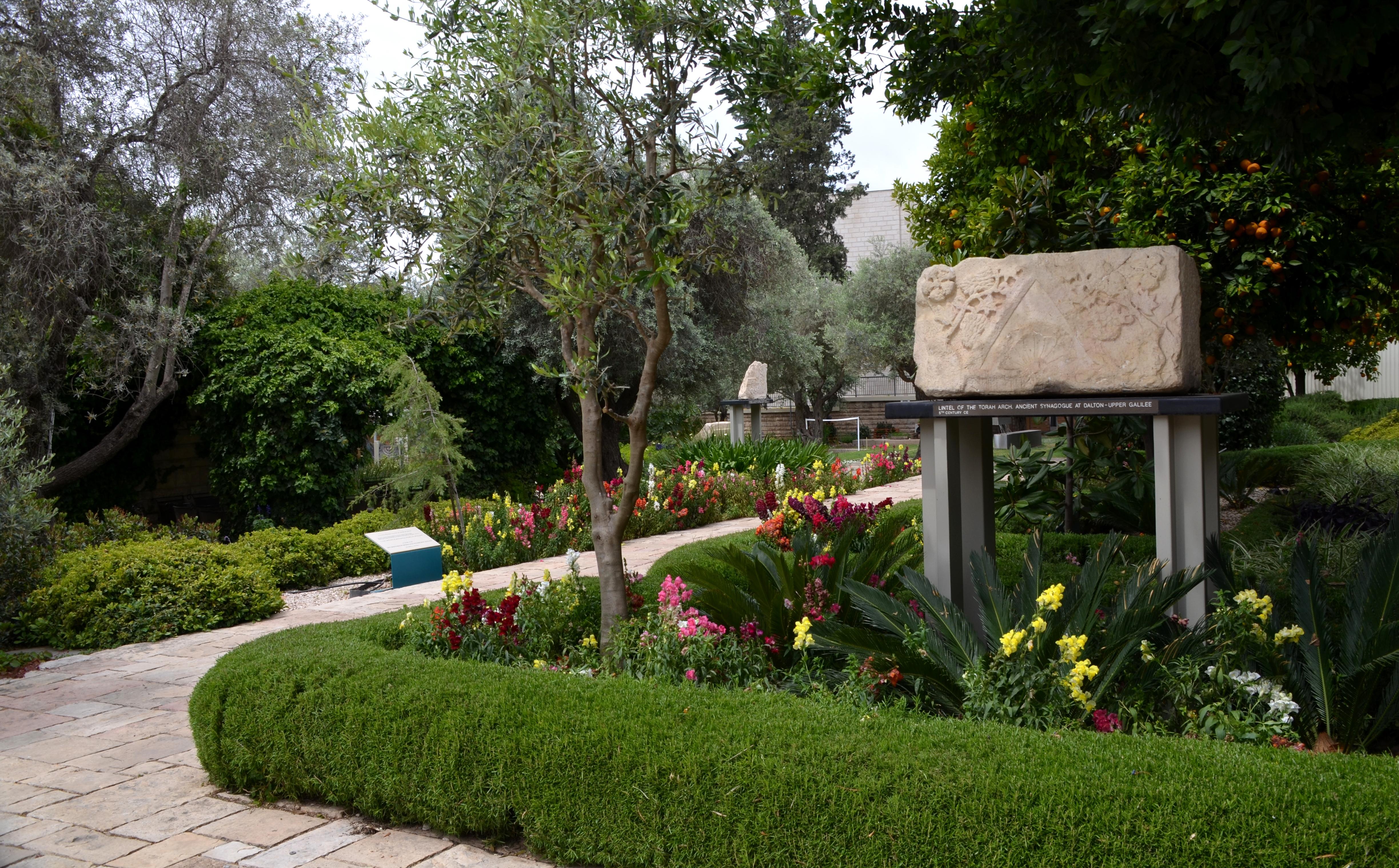 Back gardens Beit Hanasi